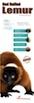 red_ruffed_lemur copia